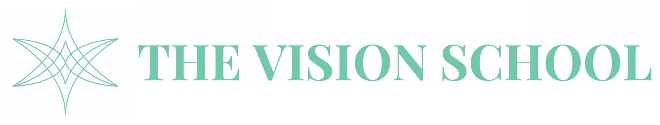 The Vision School